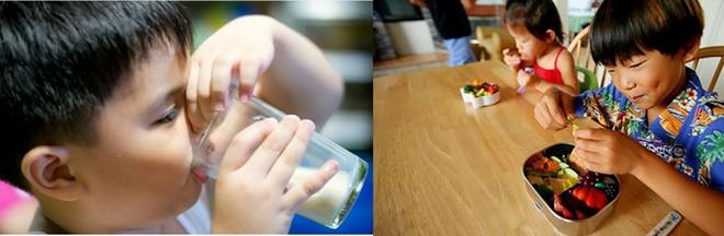 Trẻ Việt thường bị ép ăn còn trẻ Nhật được tự do chọn lựa thức ăn