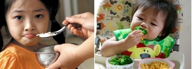 Tình trạng lười ăn, biếng ăn phổ biến ở Việt nam còn trẻ Nhật thì ít gặp