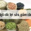 Ngũ cốc lợi sữa Nam Chi